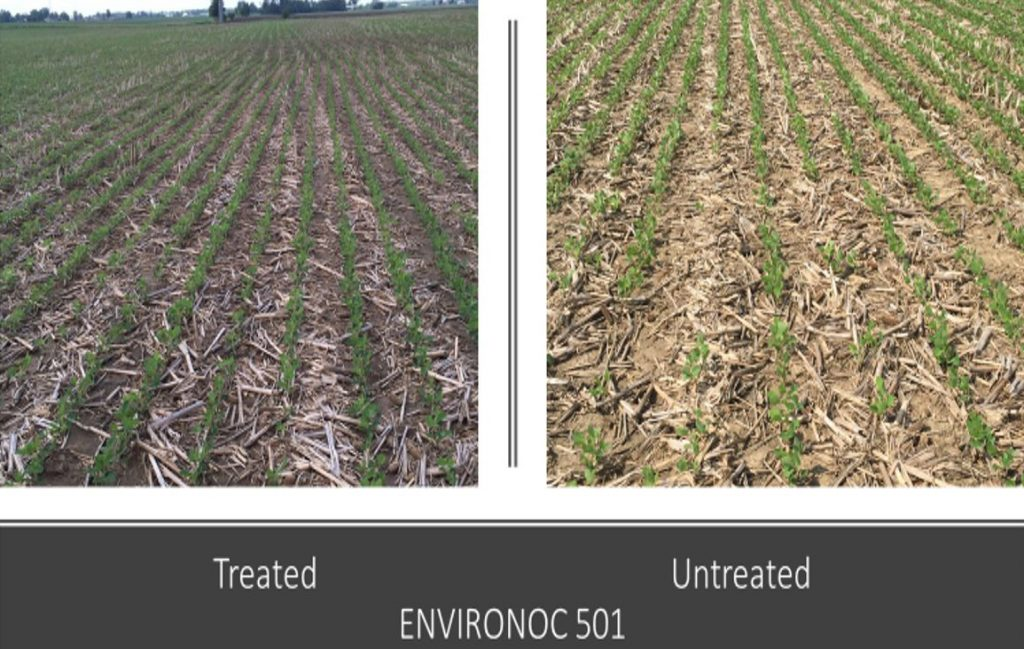 501 treated crops