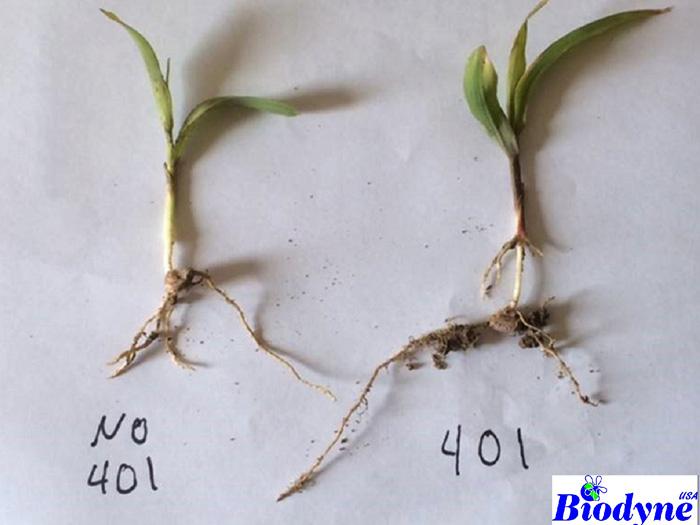 plantstimulantApp