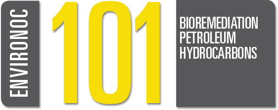 bioremediation petroleum hydrocarbons