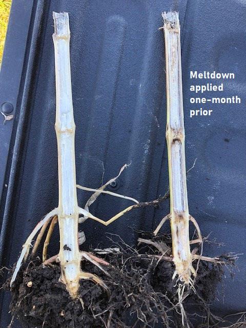 crop residue digester