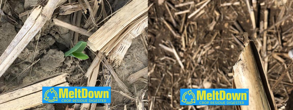 meltdown crop residue