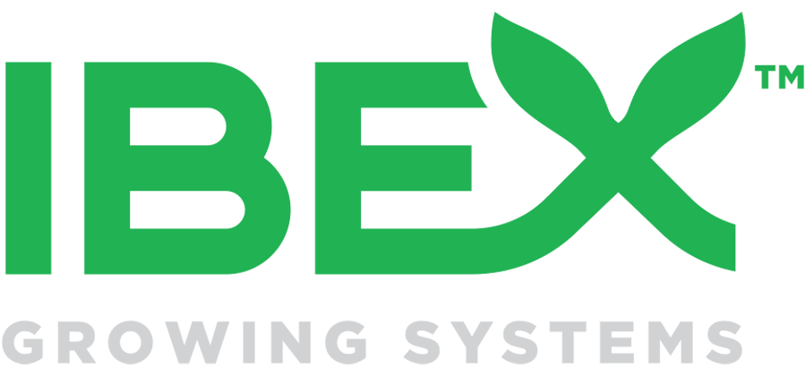 ibex grows