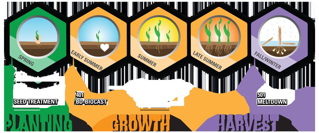 efficient soil nutrient management