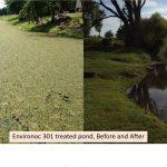 Reduction of sludge